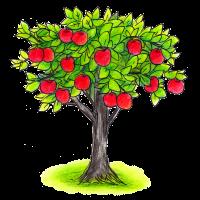 リンゴの木の話